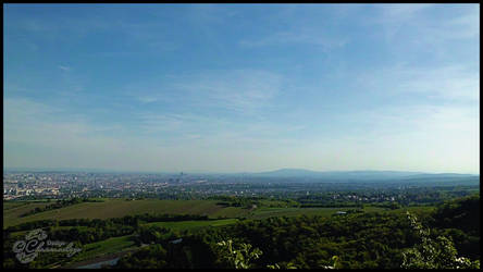 View Over Vienna From Leopoldsberg-003