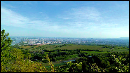View Over Vienna From Leopoldsberg-004