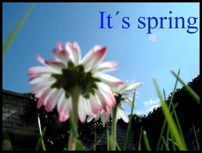 It's spring by Teegebaeck