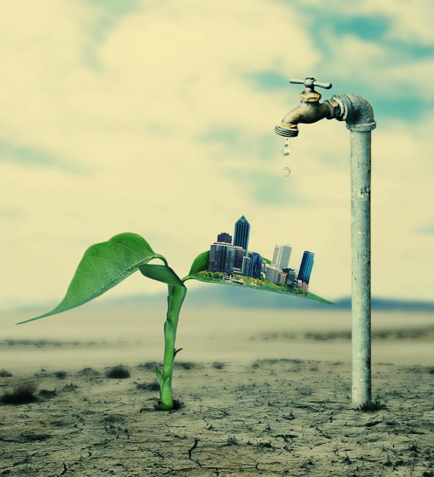 صرفه جویی و بهینه سازی در آبیاری گیاهان