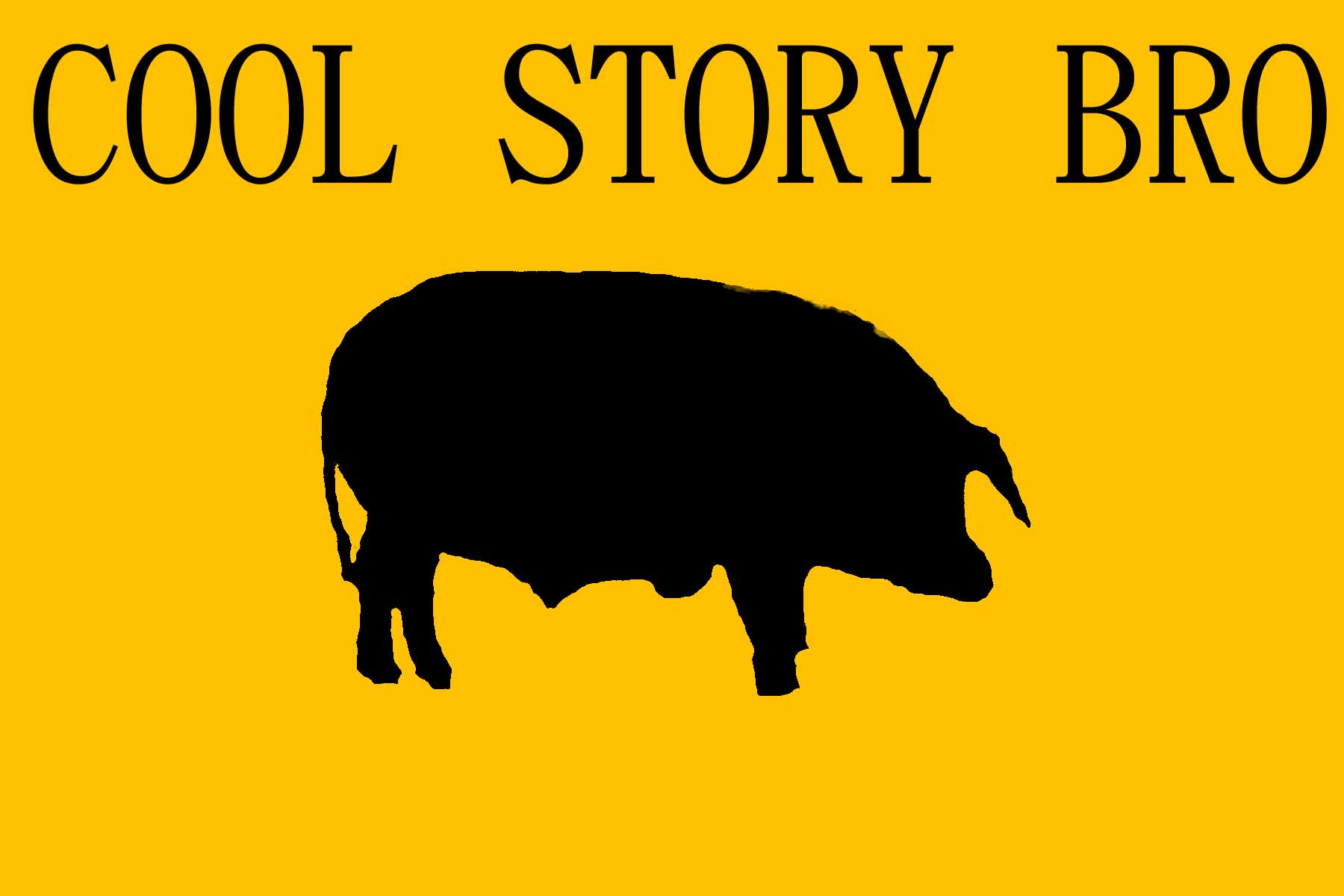 http://fc04.deviantart.net/fs42/f/2009/071/4/2/Cool_Story_Bro_by_CALLITACOMEB.jpg