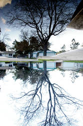 Reflection by Yreka