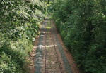 forest railway by ikacap42