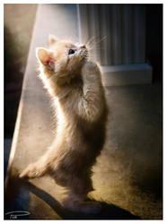 Praying Kagura pt. II by Photo-Cap