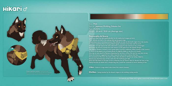 Hikari - Reference Sheet (Rakuen's Admirer)