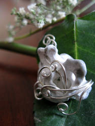 Raidonia's Amulet