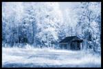 Suomi no4 - ice by stadma