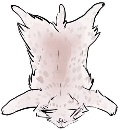 Albino Lynx Pelt By Cani Bal