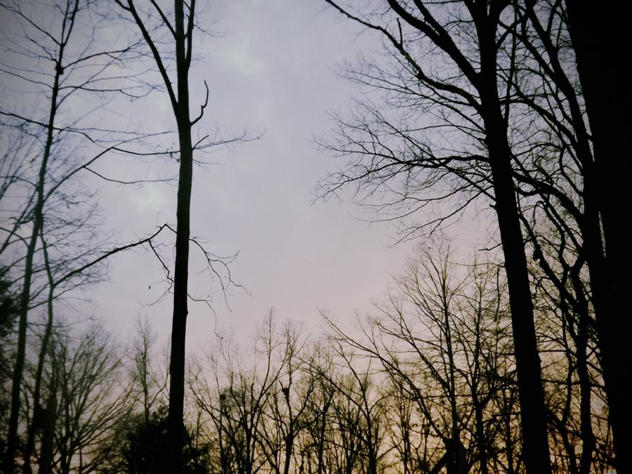 Winter Time by wabisabi-wo-sagasu