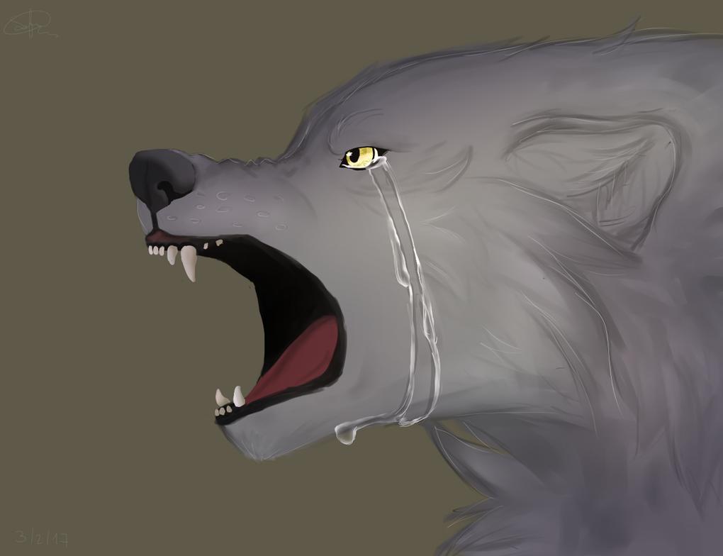 Sad Wolf By Akinal78 ...