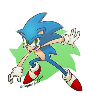 Sonic Rules