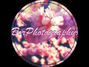 BorPhotography's Profile Picture