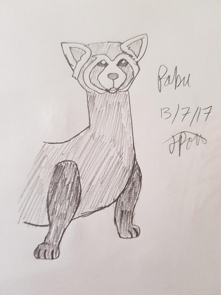 Pabu by CK-inventor