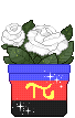 Poly Pot by M-adKing