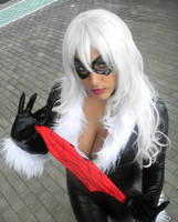 Balck Cat cosplay 2 by GeckUP