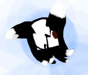 blackstarshadows18's Profile Picture