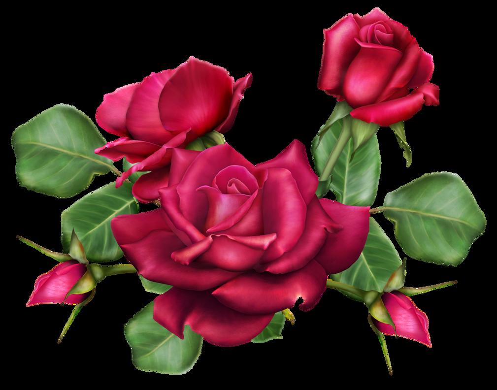 Rose bouquet by autumns muse on deviantart for Bouquet de fleurs lilas