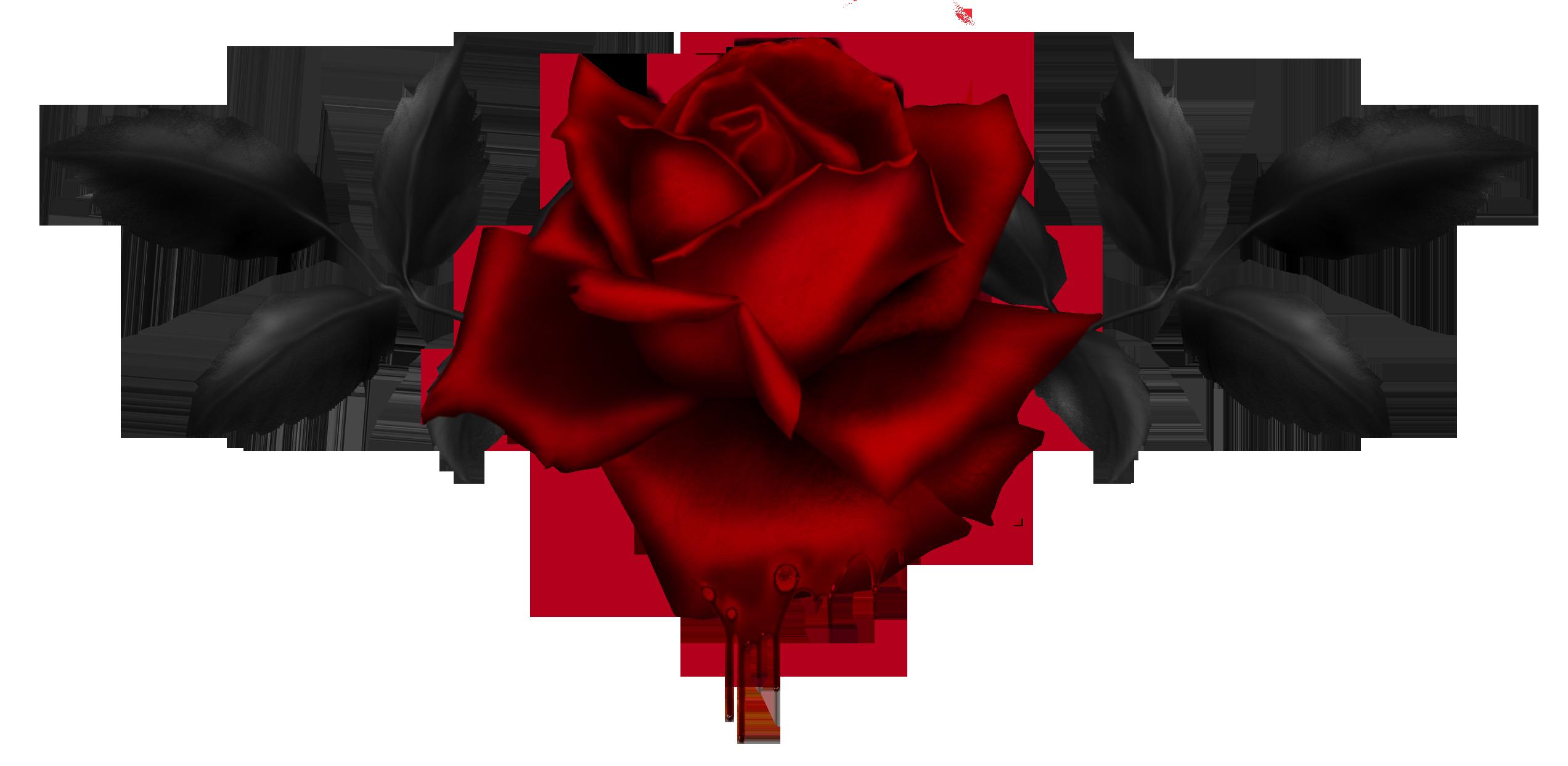 My Bloody Valentine Live At Sputnik Berlin 1985 02 11