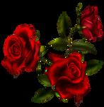 Rose Bouquet 3