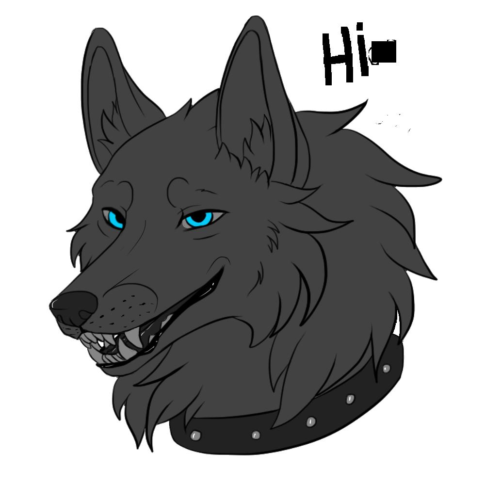 SilvergriN-w's Profile Picture