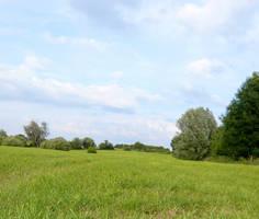 In the fields -1- by 7UV733