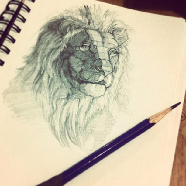 Lion Head Anatomy By Thamzmasterpiece On Deviantart