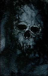 Skull by Andre-Coelho