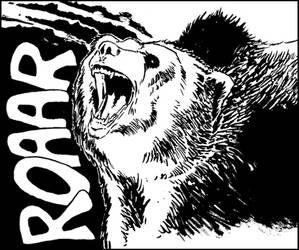 Bear by Andre-Coelho