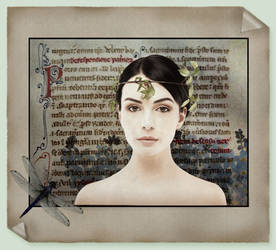 The Dragonfly Manuscript by saperlipop