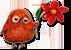 Little Bird 65 Res