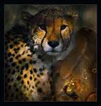 Cheetah and Moth by saperlipop