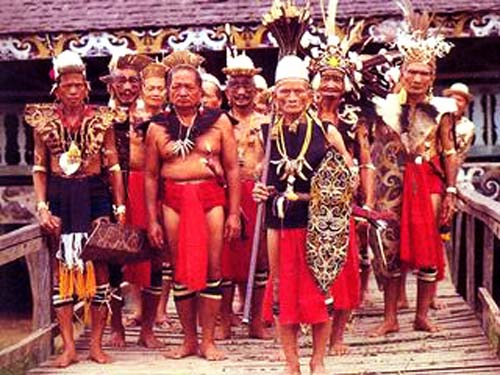 the dayak tribal habitat and history Cultivating, longhouse-residing group in the interior of indonesian borneo, have been subject to massive the ibans have, like many indonesian tribal societies, dealt with a history of political change in terms of these ecosystems provide unique habitats for many endangered species, such as the.