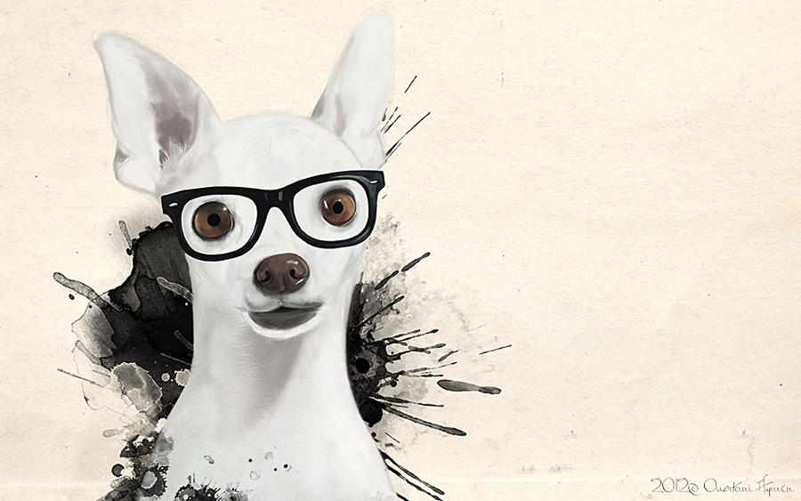 Hipster Dog By Aymen Ouertani On DeviantArt