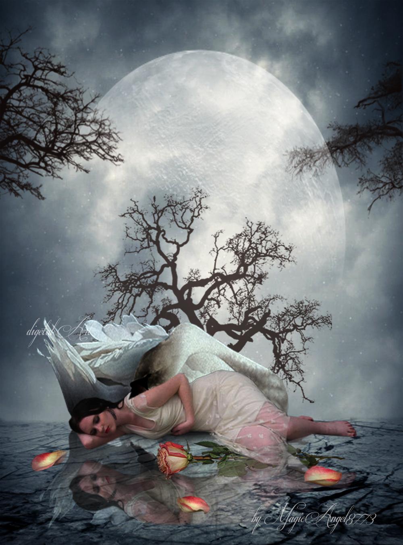 The Sleeping Swan
