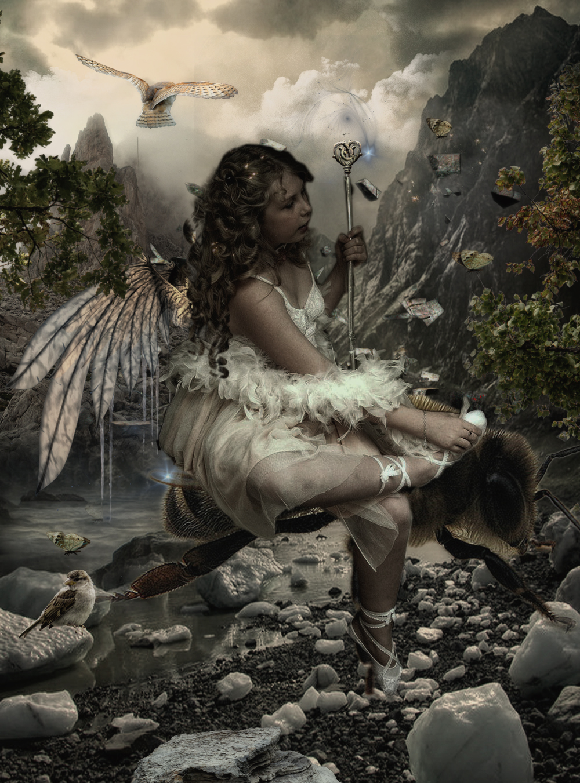 The Bee Fairy
