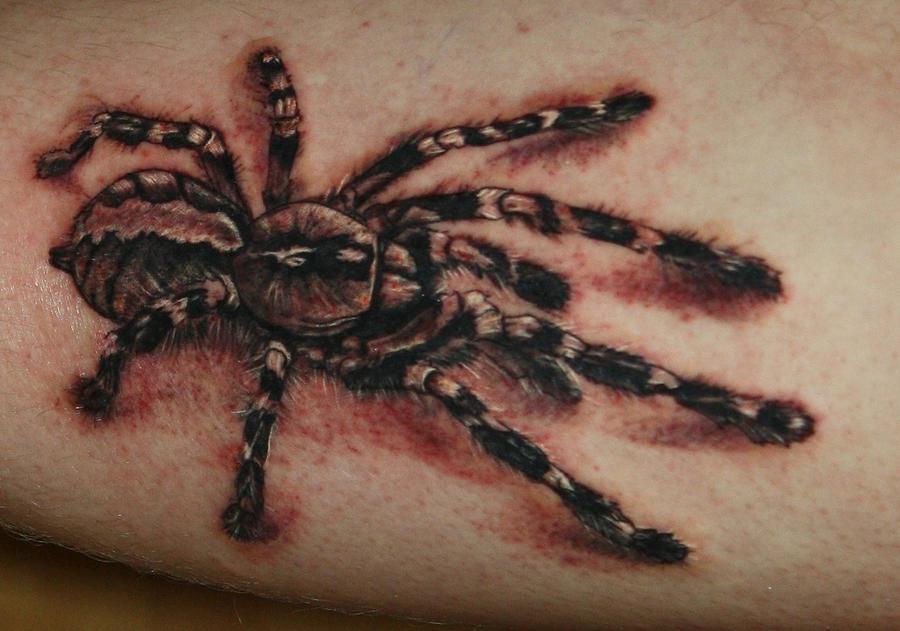 Spider Tattoo by Natissimo on DeviantArt