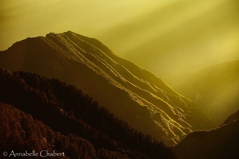Bathed in Light by Annabelle-Chabert