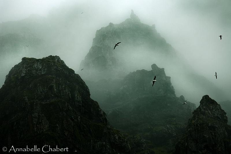 Survol by Annabelle-Chabert