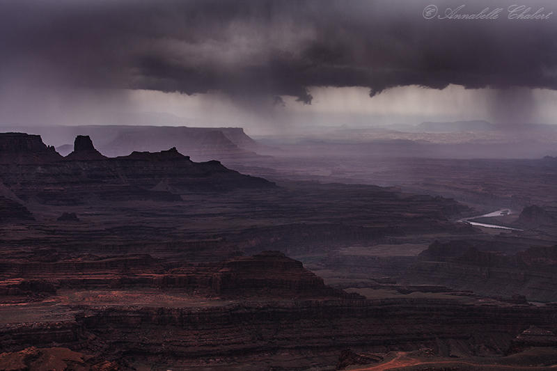 Stormy by Annabelle-Chabert
