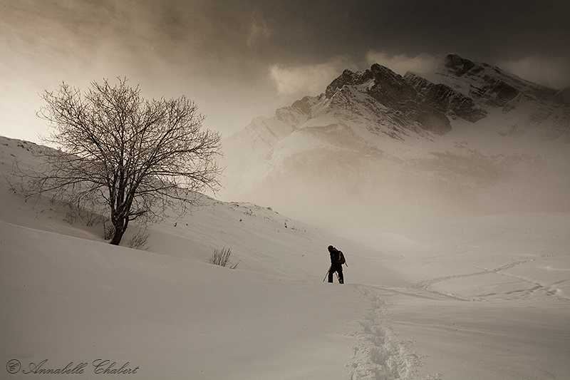 Aravis by Annabelle-Chabert