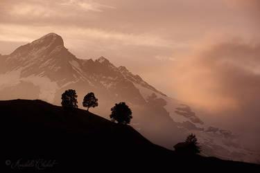 Mittelhorn by Annabelle-Chabert