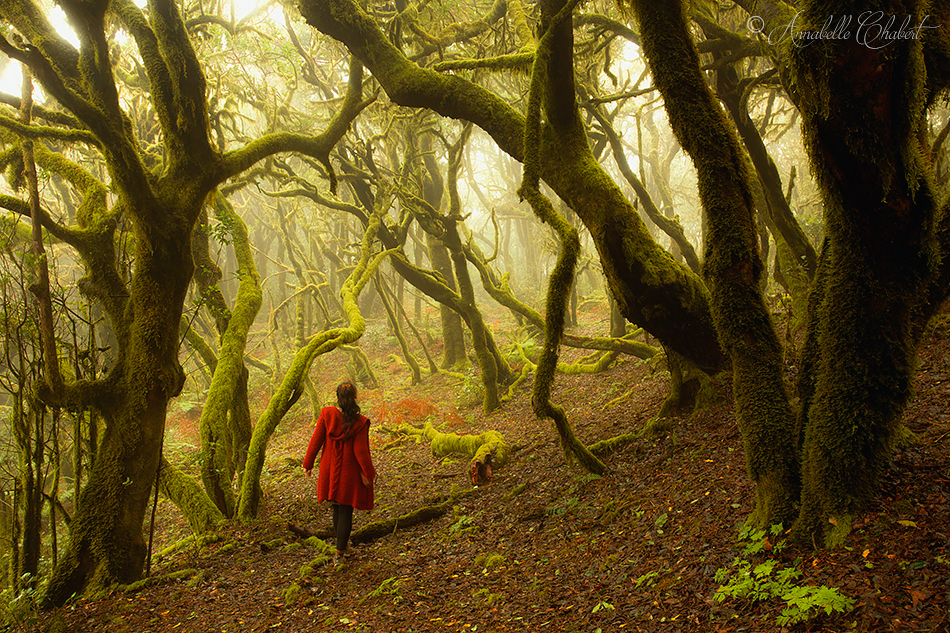 Red Riding Hood by Annabelle-Chabert