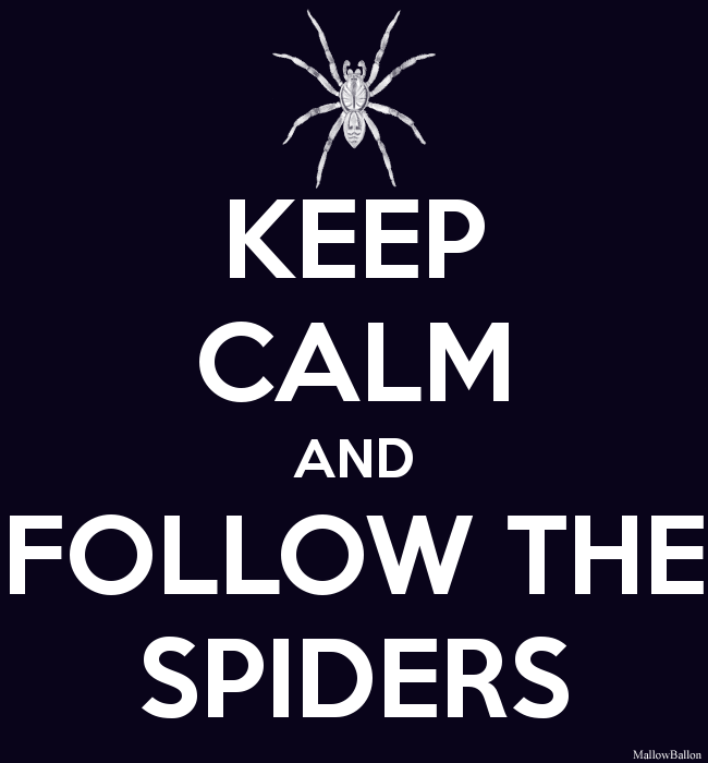 http://fc07.deviantart.net/fs71/f/2012/250/9/1/keep_calm_and_follow_the_spiders_by_mallowballon-d5dx631.png