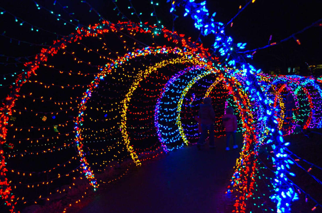 Wps Garden Of Lights By Yeliriley On Deviantart