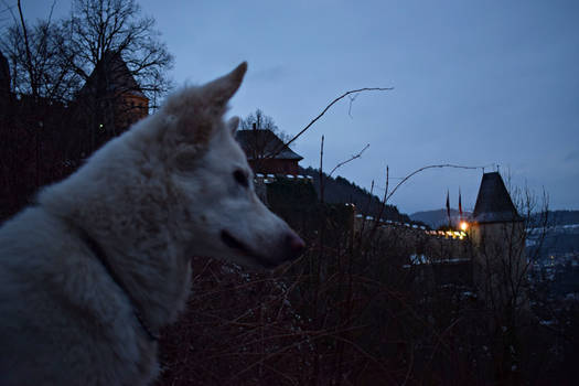 An epic trip to Karlstejn by CaenRagestorm