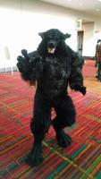 Real Werewolf!