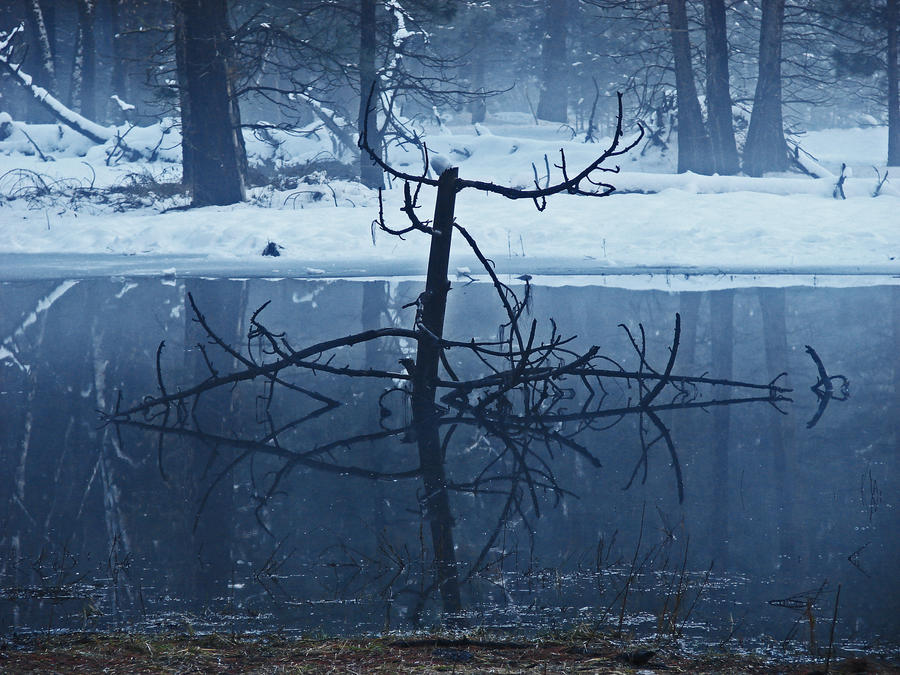 Winter Pond 4 - stock by Synaptica-stock