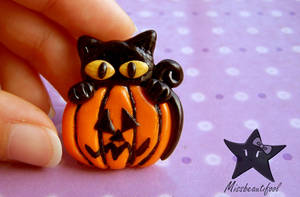 Cats_Pin by missbeautifool