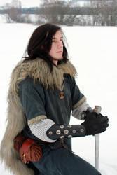 Viking Series 08 by Liancary-art