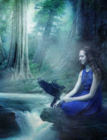 Bird song by Liancary-art